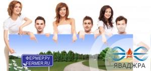 технологии сушения в российском АПК на fermer.ru